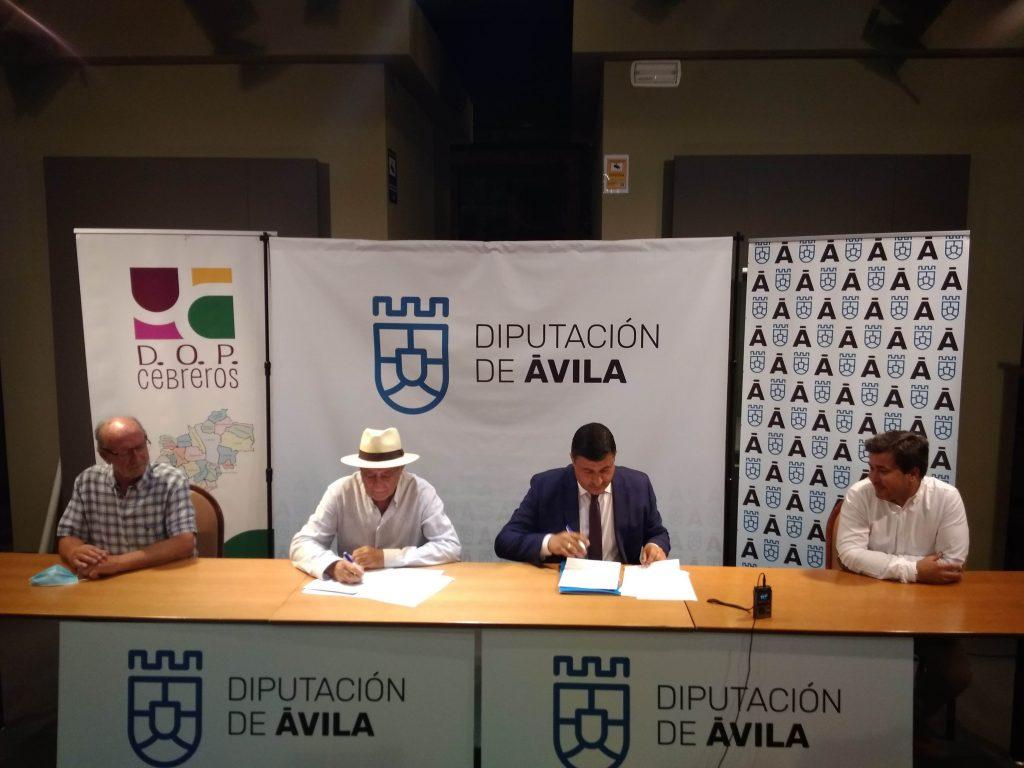 Se firma el Convenio con la Diputación de Ávila para la inscripción de viñedo